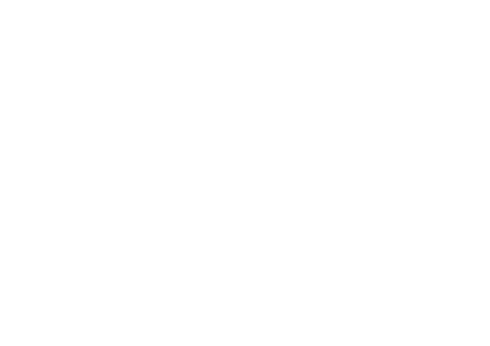 Trudylines - Tattoo Artist
